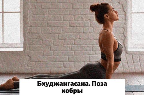 Поза кобры в йоге