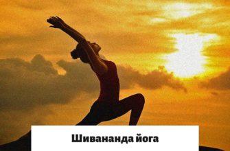 Шивананда йога